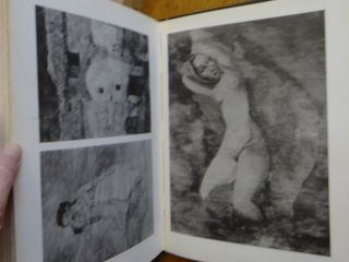 Pablo Picasso: Vol. 1, Works from 1895 to 1906