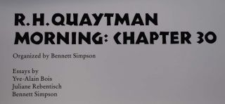 R. H. Quaytman -- Morning: Chapter 30