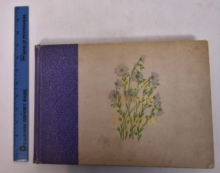 Wild Flowers of America; Flowers of Every State In The American Union - By A Corps Of Special...