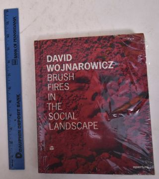 David Wojnarowicz: Brush Fires in the Social Landscape. Lucy R. Lippard