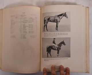 The Grand National 1839-1930