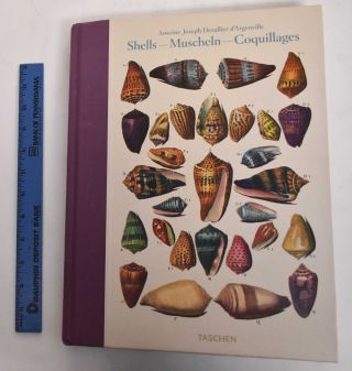 Shells - Muscheln - Coquillages: Conchology or the Natural History of Sea, Freshwater,...